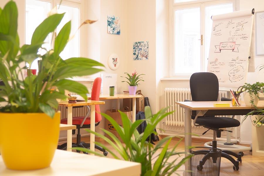 Dein Schreibtisch im Coworking Firgun